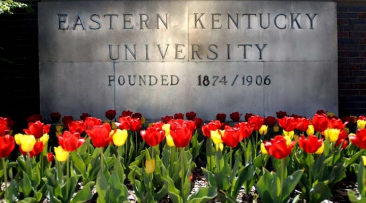 EKU with Tulips